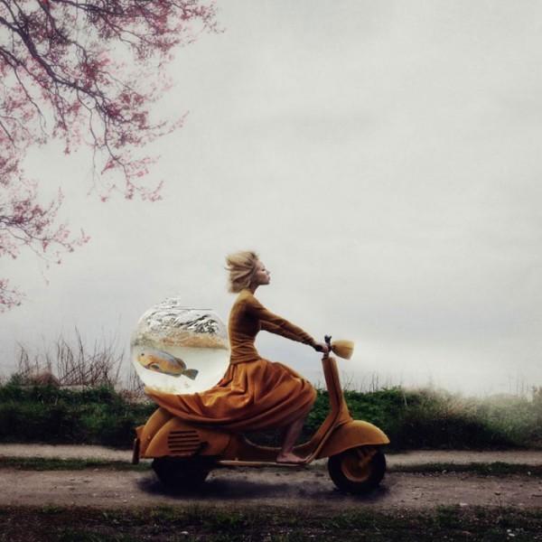 concurso-mundial-fotografia-sony-09