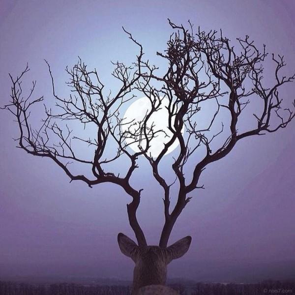 fotografia-surrealista-robert-jahns-20