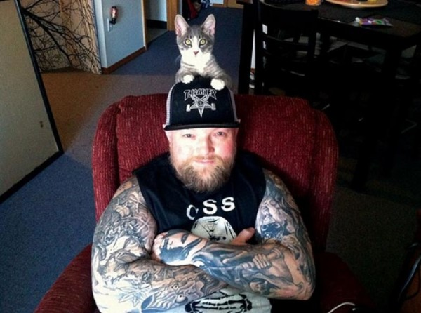 heavy-metal-con-gatos-01