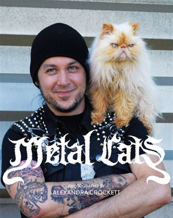 heavy-metal-con-gatos-09