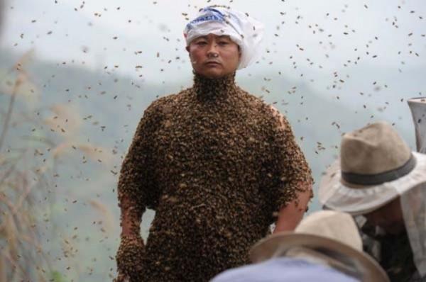 hombre-cubierto-abejas-08