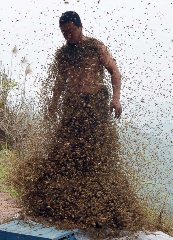 hombre-cubierto-abejas-09