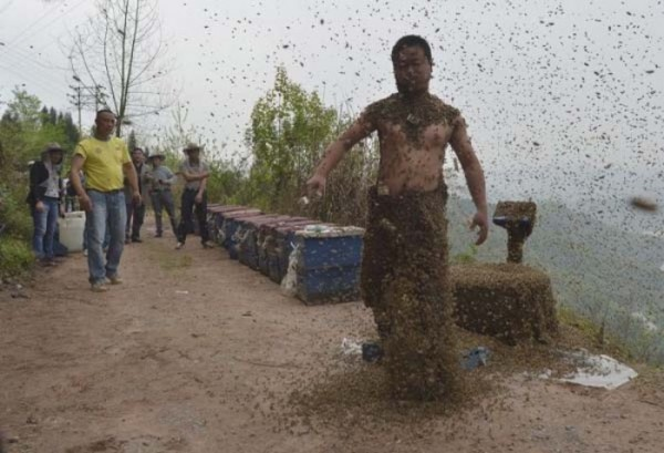 hombre-cubierto-abejas-10