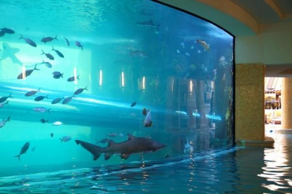 piscinas-exoticas-de-todo-el-mundo-08