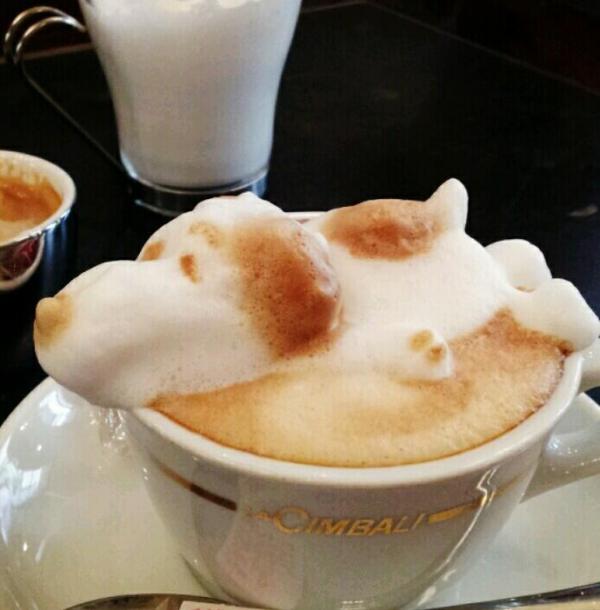 arte-latte-3d-02
