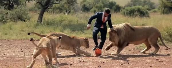 jugando-con-leones-salvajes-08