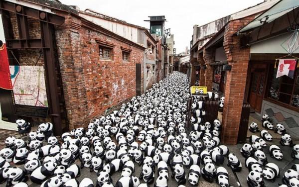 panda-papel-mache-gira-paulo-grangeon-03