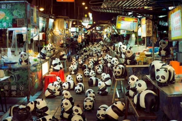 panda-papel-mache-gira-paulo-grangeon-05