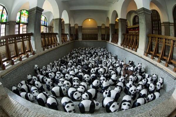 panda-papel-mache-gira-paulo-grangeon-08