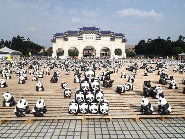 panda-papel-mache-gira-paulo-grangeon-10