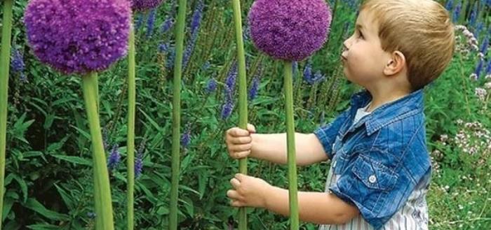 Historias de moda en la web interesantes y de actualidad for Bricolaje para jardin