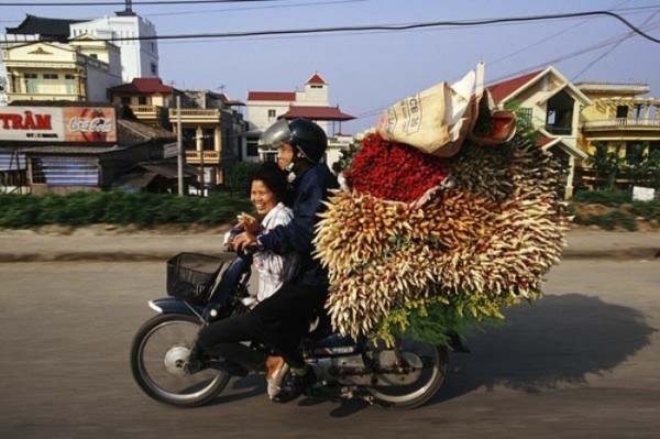 transporte-con-motocicleta-en-vietnam-00