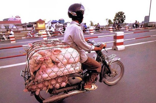 transporte-con-motocicleta-en-vietnam-12
