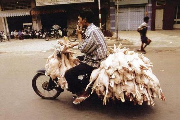 transporte-con-motocicleta-en-vietnam-17