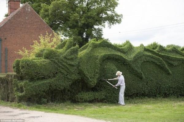 un-dragon-en-el-jardin-02