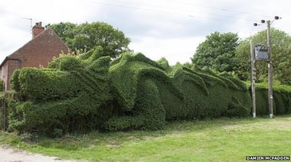 un-dragon-en-el-jardin-04